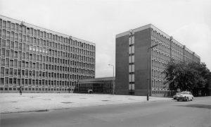 collegium-novum-l-60