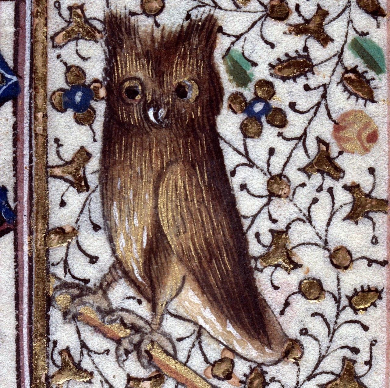 eagle-owl-book-of-hours-savoie-15th-cenutury
